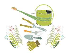 Wholesale nurseries supplying quality shrubs and perennials